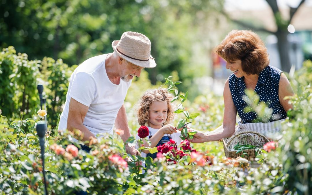 Gardening With Hearing Aids